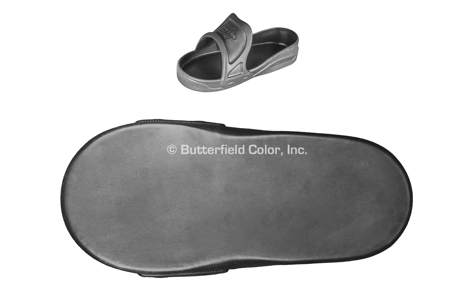 Erfield Color Shoe In Pro Finish